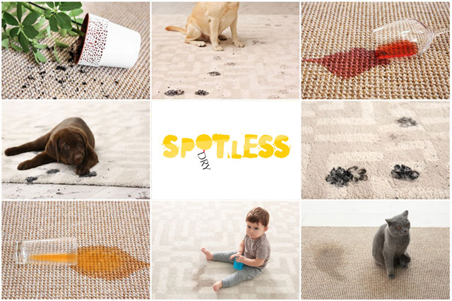 spotless dry carpet cleaning - domestic